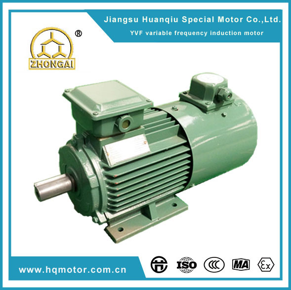 Jiangsu huanqiu special motor co ltd for Variable frequency control of induction motor